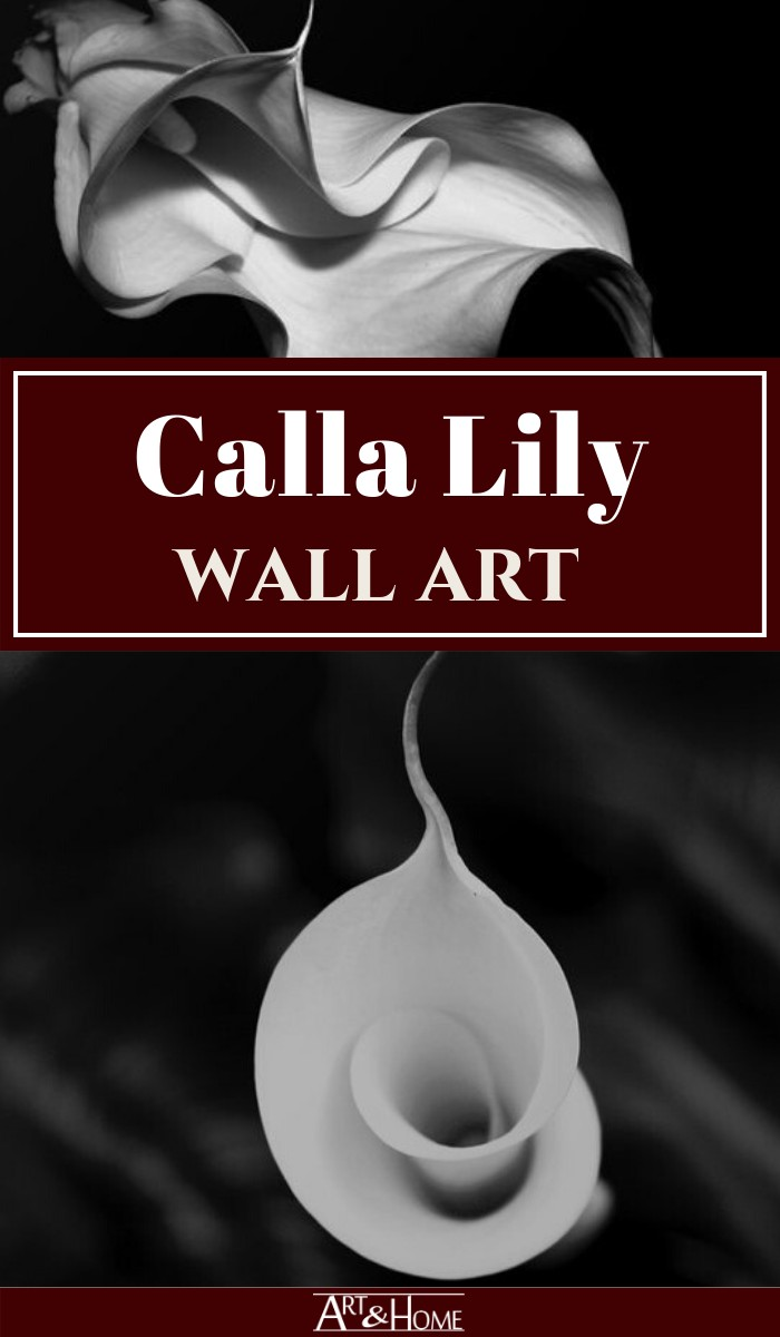 There is something sensual yet sophisticated about Calla Lily wall art that can add a unique and dramatic touch to any home.