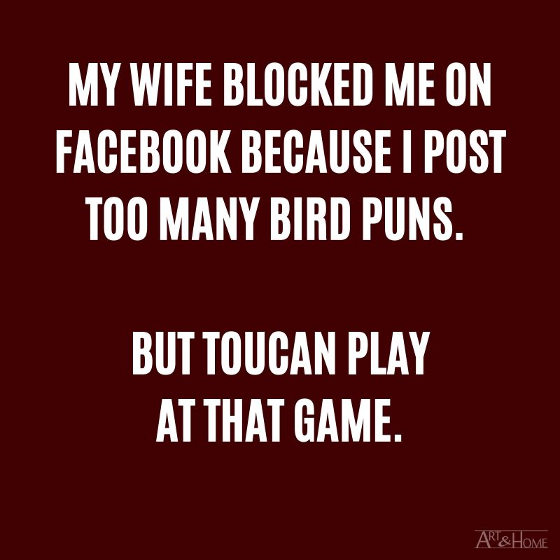 My wife blocked me on Facebook because I post too many bird puns. Well, toucan play at that game. #DadJokes