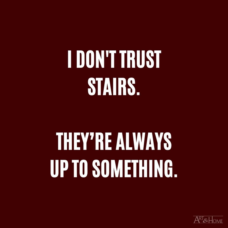 I don't trust stairs. They're always up to something.