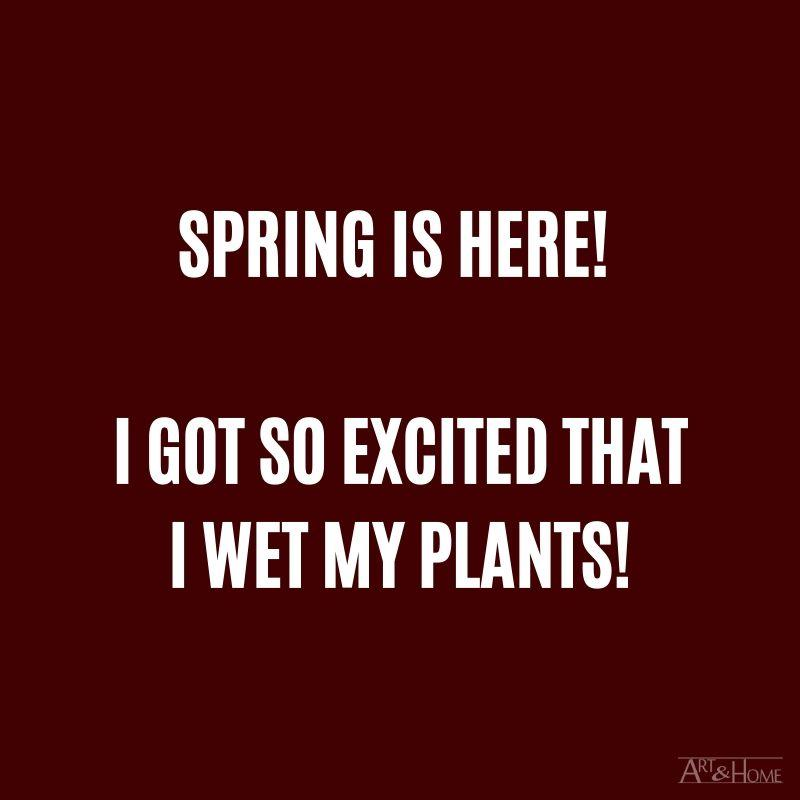 Spring is here! I got so excited I wet my plants! #DadJokes