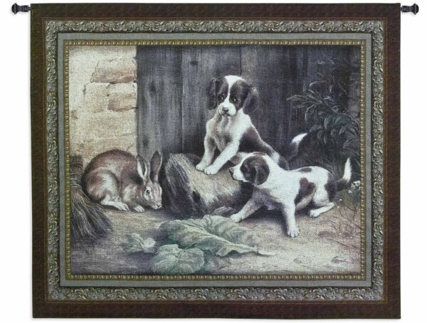 """Curiosity 