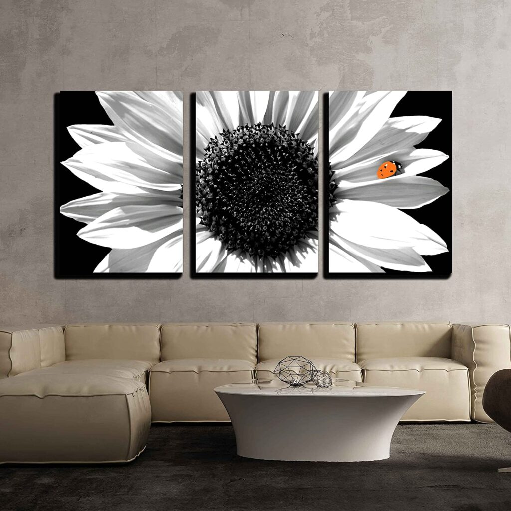 Sunflower in Black and White Canvas Art Print