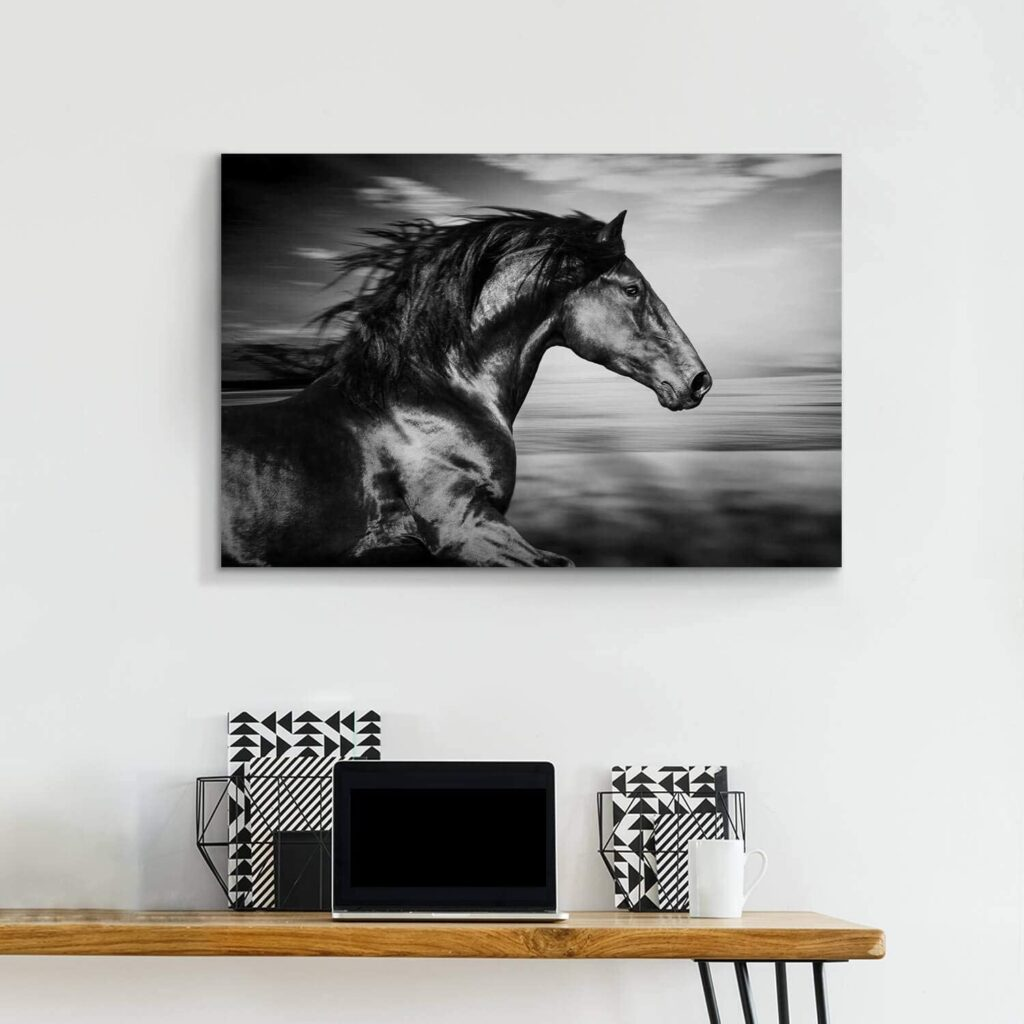 Wild Black Stallion Canvas Art Print
