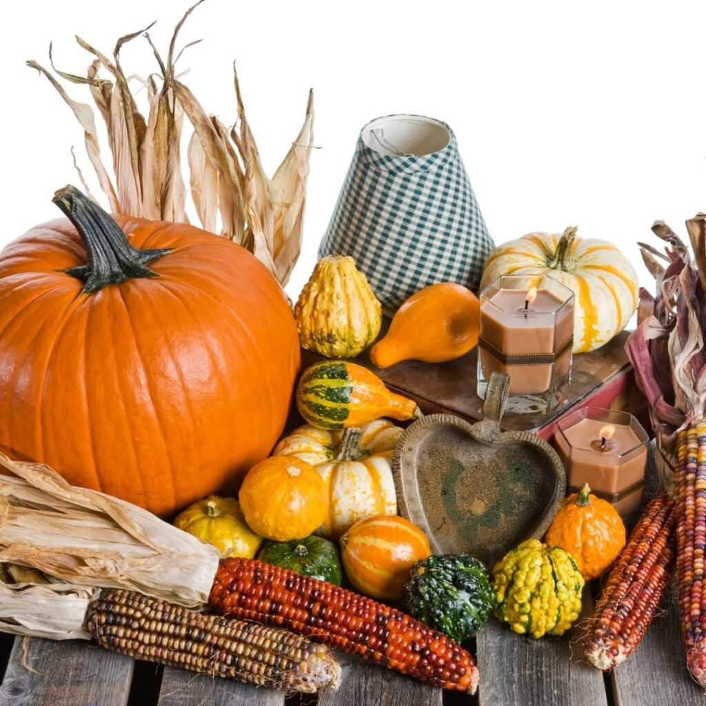 Fall Pumpkins Gourds and Indian Corn