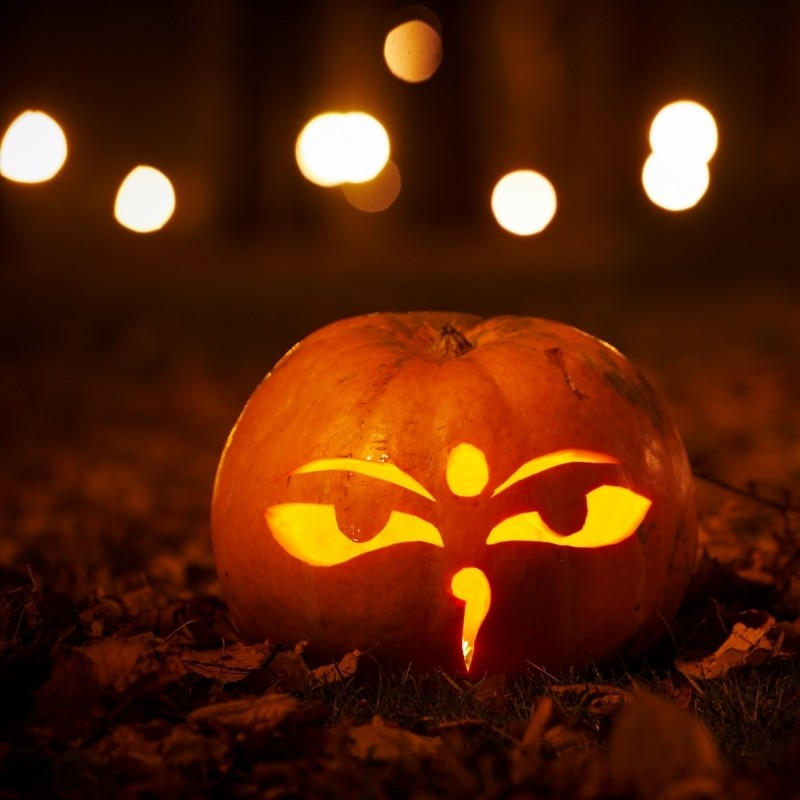 Angry Owl Carved Pumpkin