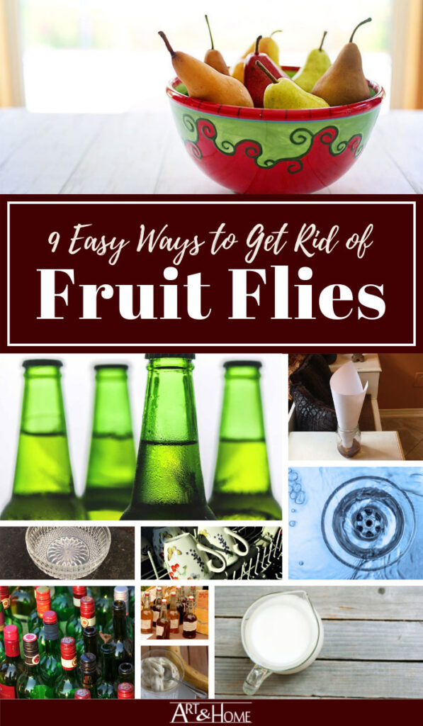 How to Get Rid of Fruit Flies the Easy Way