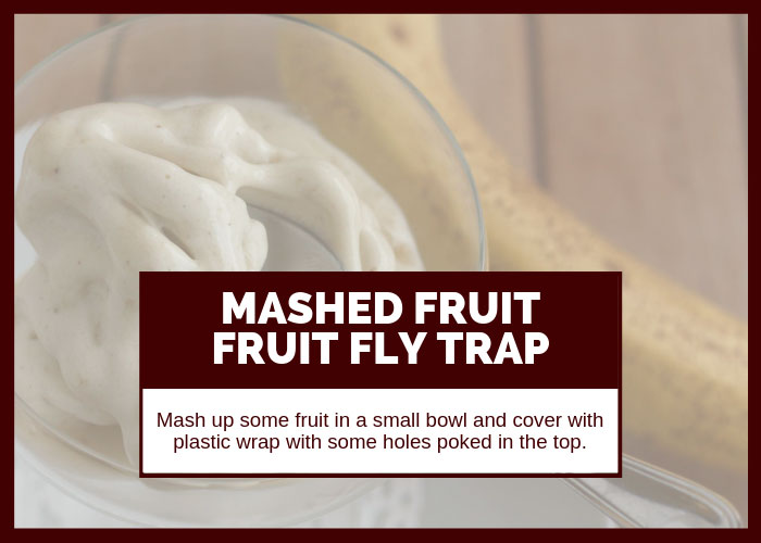 How to Get Rid of Fruit Flies Using Mashed Fruit