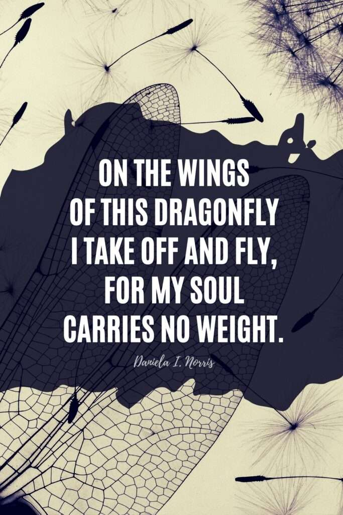 Dragonfly Quote by Daniela I Norris
