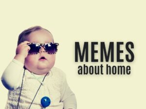 Funny MEMEs About Home Life