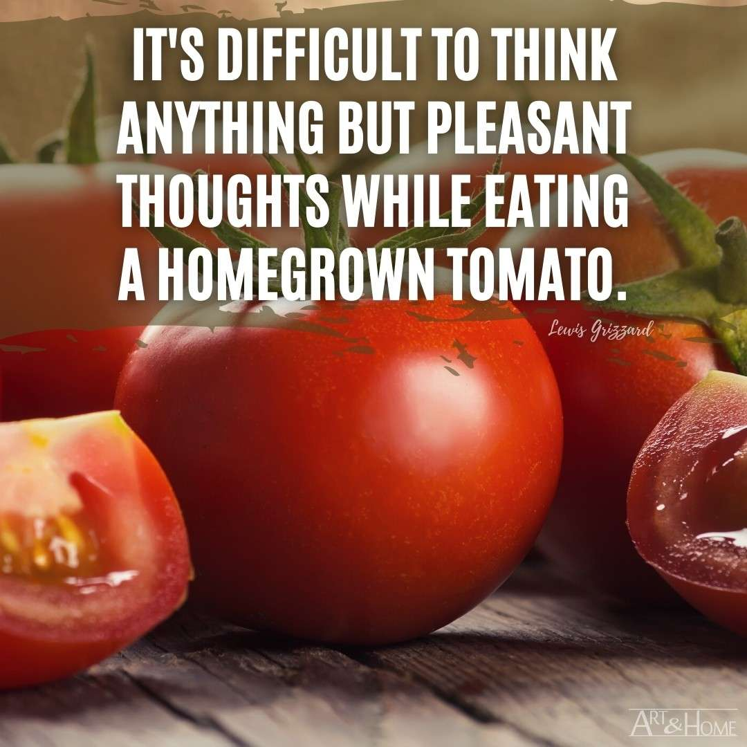 Homegrown Tomato Quote