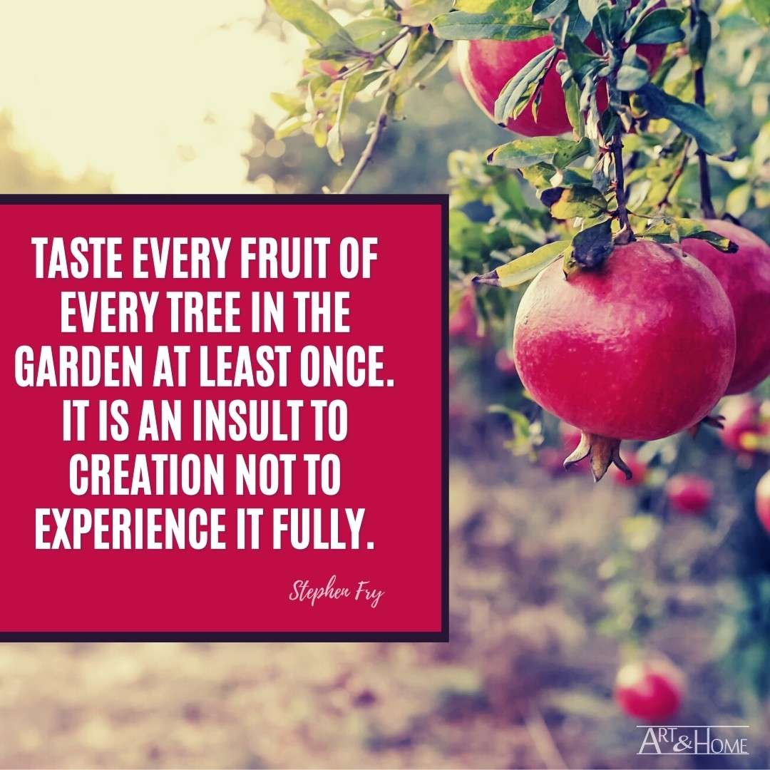 Taste Every Fruit Stephen Fry Quote