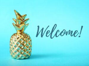 Pineapple Decor is a Symbol of Hospitality