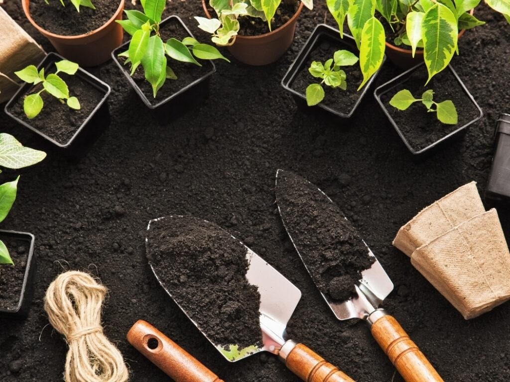 The importance of understanding your climate and soil conditions