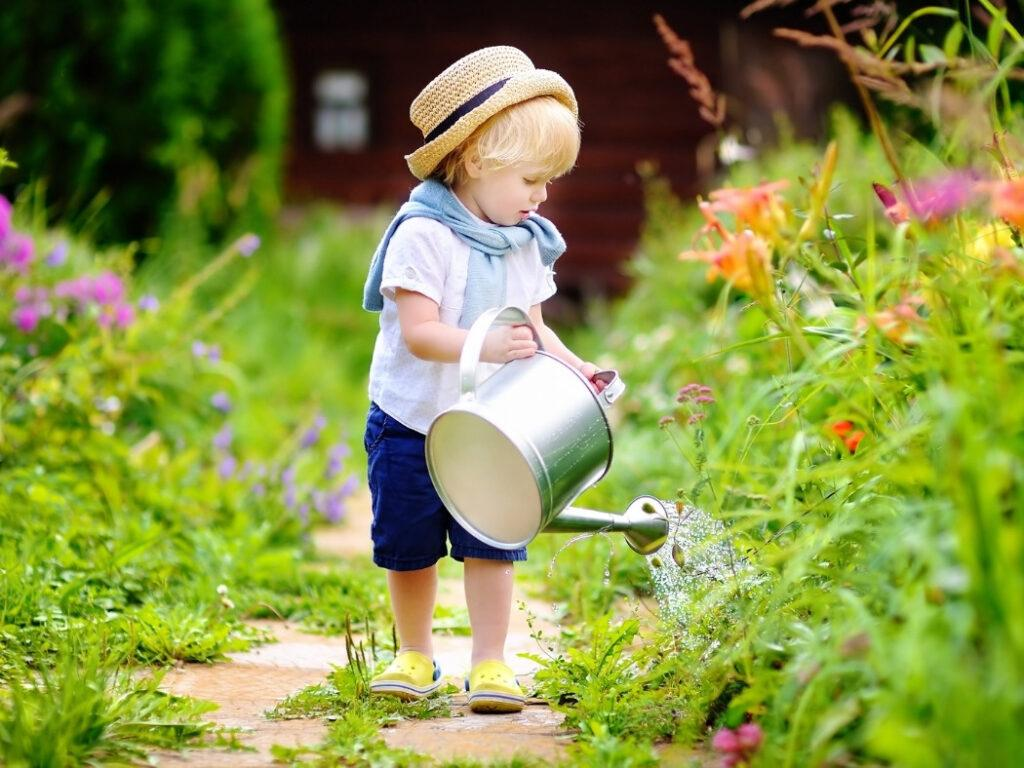 The Simple Joys of Backyard Landscaping