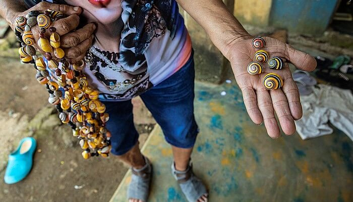 Jewelry made from Painted Snails