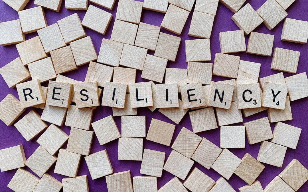 What Does it Mean to Be Risk Resilient?