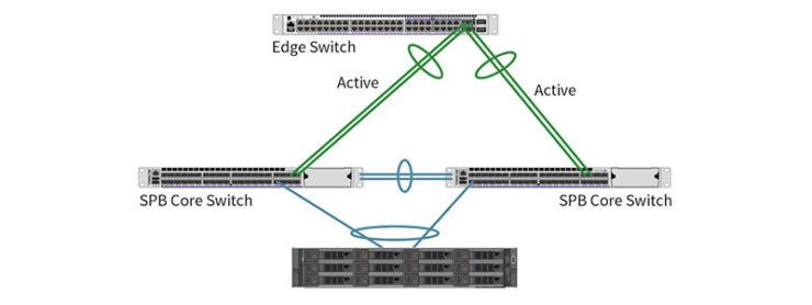 Network Resiliency at the Hardware Level