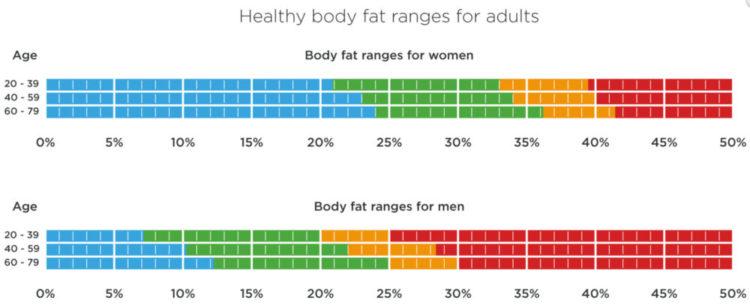 Body Fat Ranges