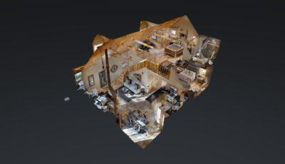 Beech Model 3D Model
