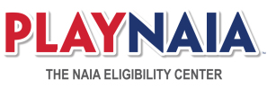 playnaia_color_logo