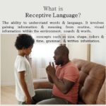 What is  Receptive Language?
