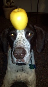Chase with apple