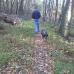 Appalachian Trail image