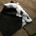 Simba's dog bed