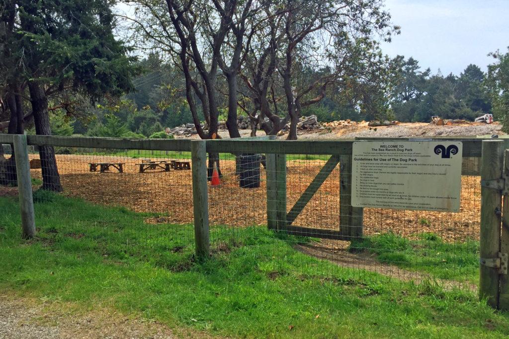TSR Dog Park