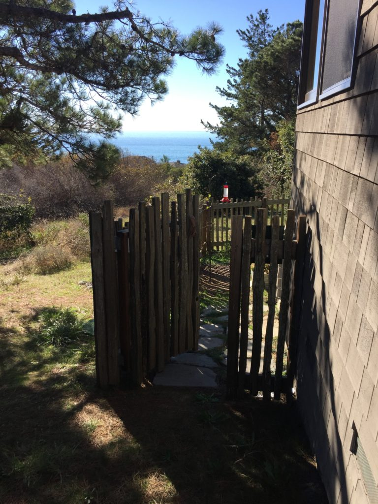 Fenced Yard Gate Exit To Trail