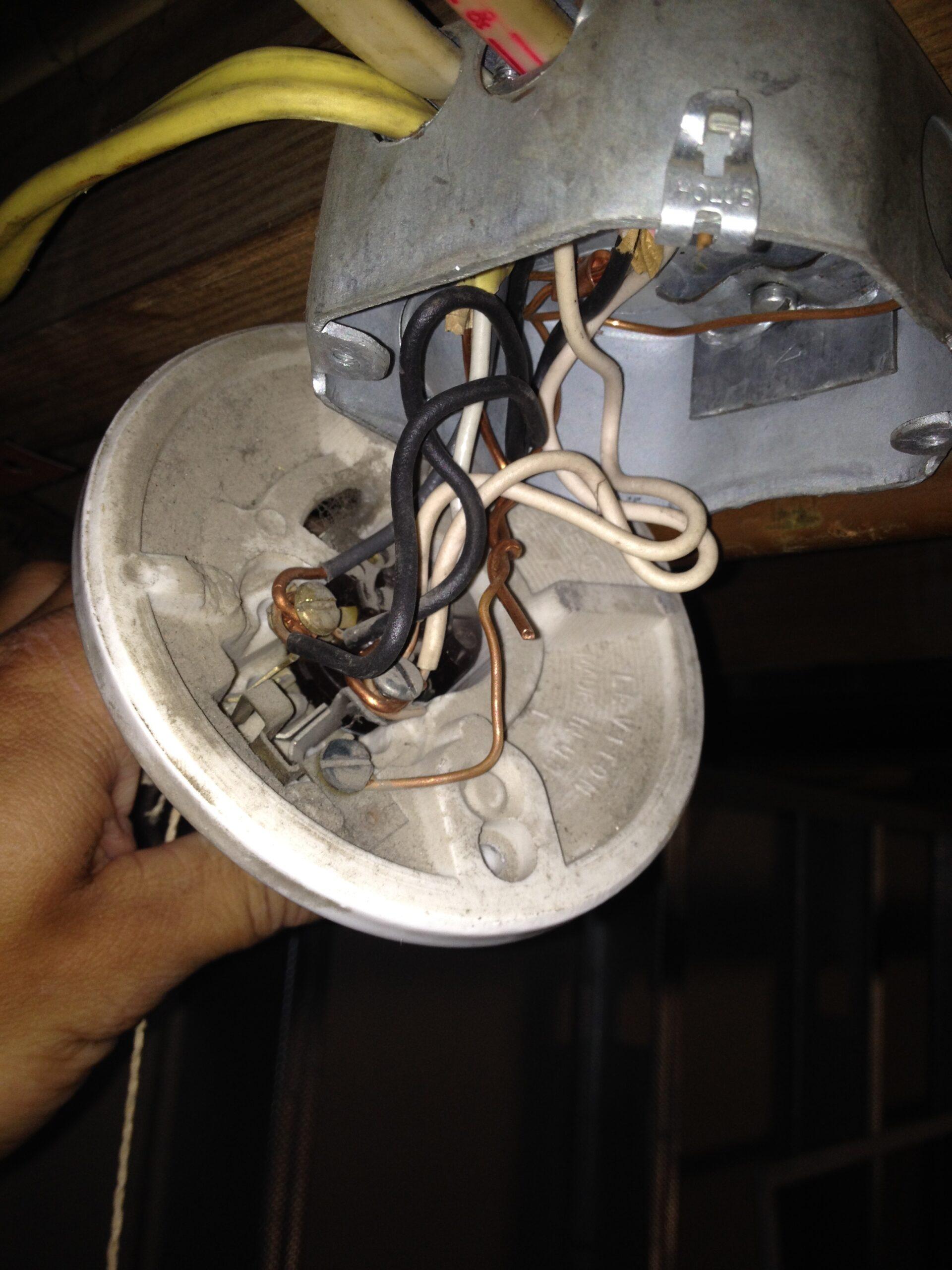 3 Wire Screw