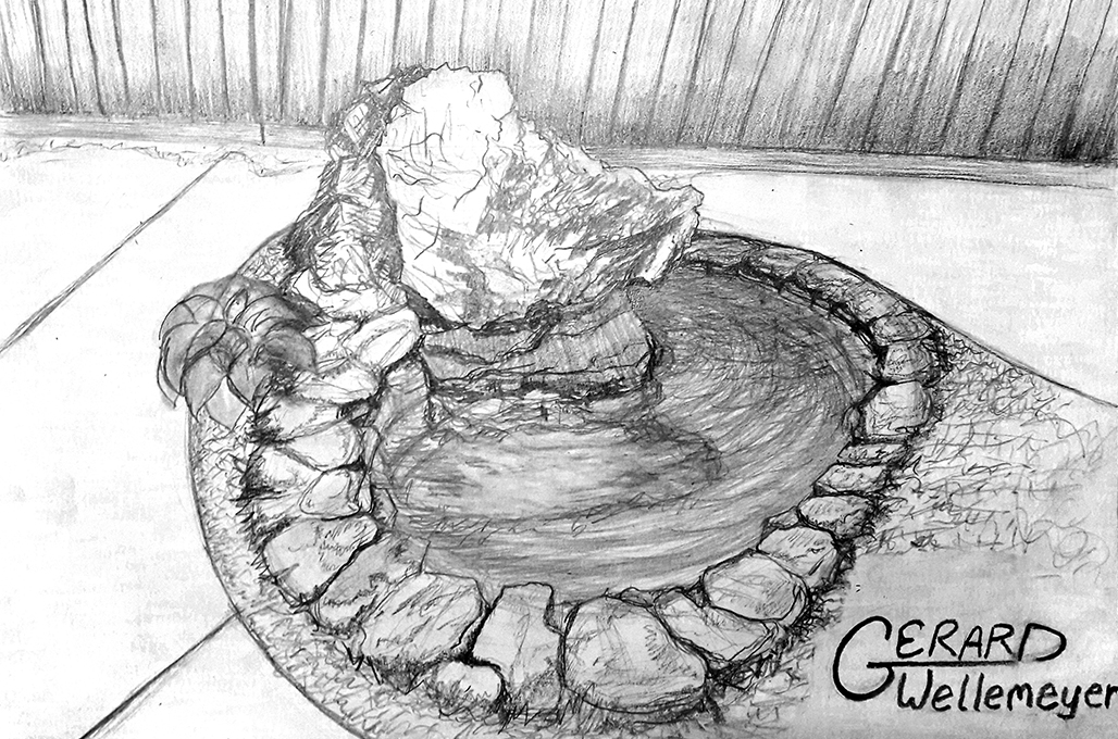 small-dragon-rock-pond-drawn-plan