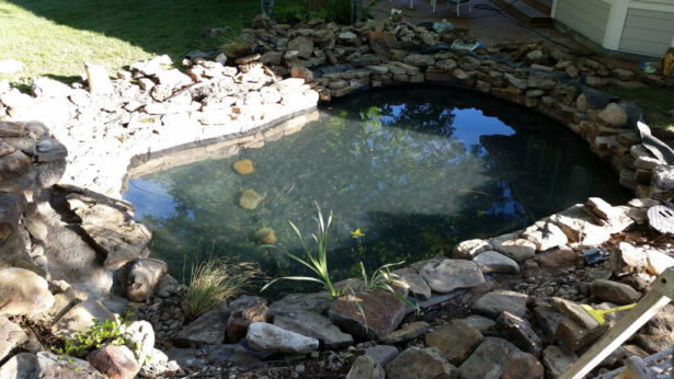 watergarden-pond-construction-filled