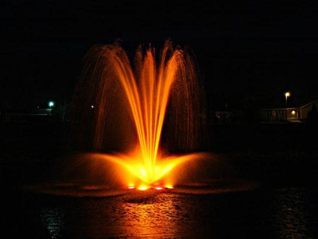AquaMaster-Bayside-5HP-Night