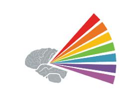 The Fiber Photometry Company - Neurophotometrics