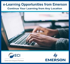 e-Learning Opportunities from Emerson