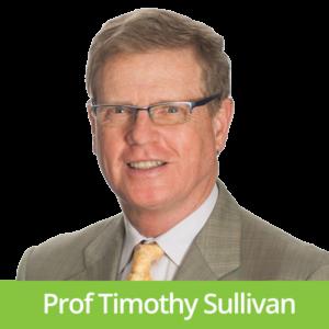 Professor Timothy Sullivan
