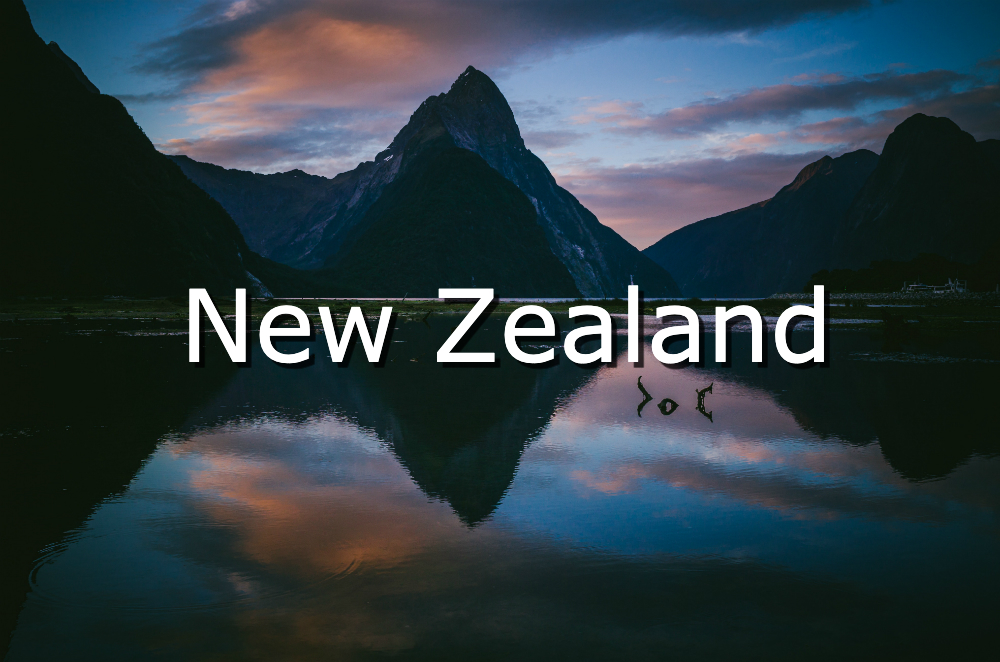 visit new zealand in your 40s
