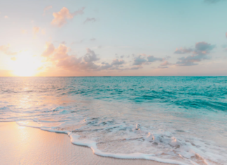 things to do in the cayman islands