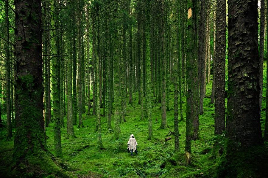 inverness scotland