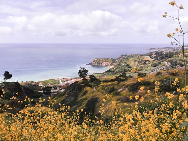 hikiing in california