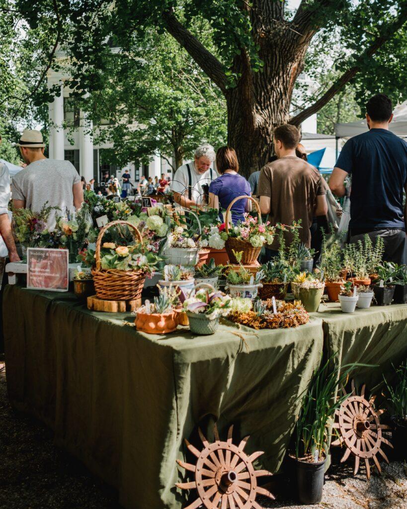 Farmer's market in the spring