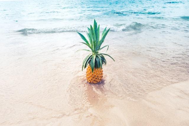 hawaii goodbye