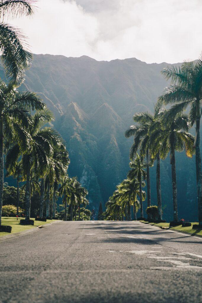The roads of Hawaii