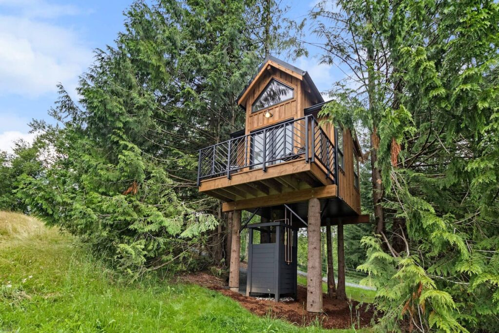 treehouse chilliwack airbnb