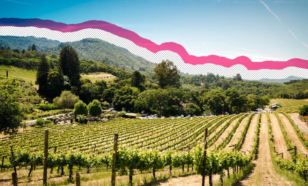 Reasons to visit Sonoma