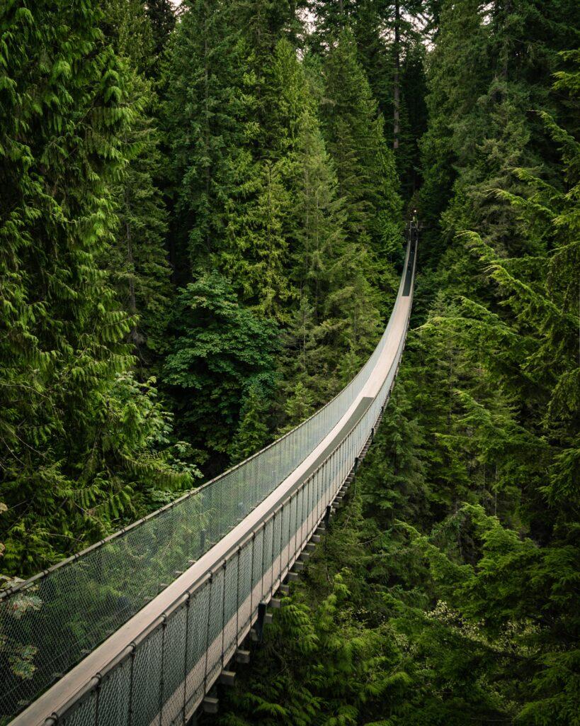 Canadian Suspension Bridge, in Vancouver, Canada
