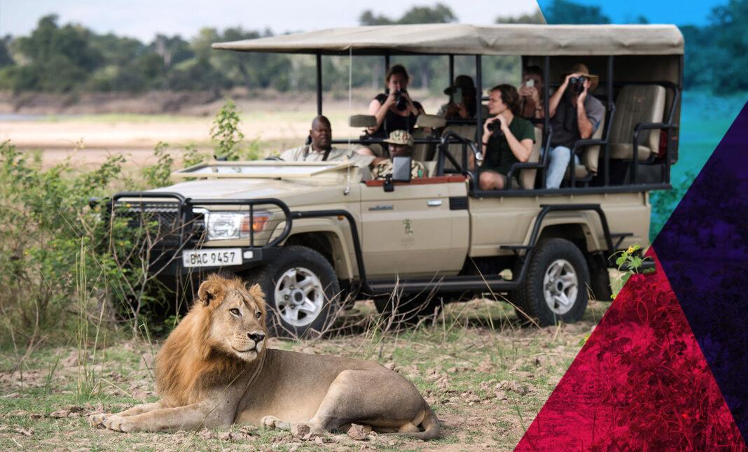 Best Safari Zambia