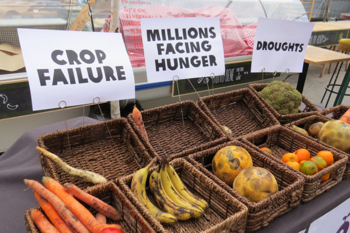 Climate change's effect on food topic of talk