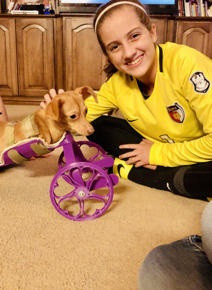 Student's project benefits pets